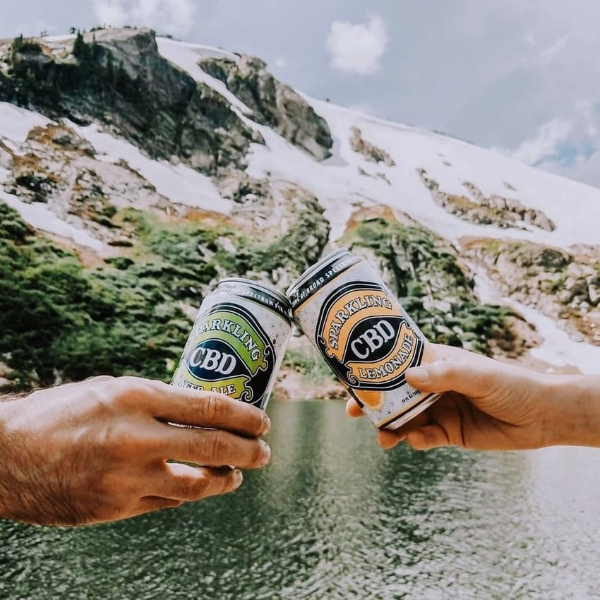 Friends toasting Sparkling CBD Ginger Ale and Sparkling CBD Lemonade at scenic lakeside picnic in mountains
