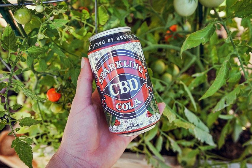 Hand holding can of Sparkling CBD Cola while relaxing in green garden